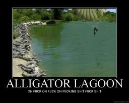 alligator-lagoon.jpg