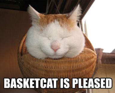 cat-basket-pleased.jpg