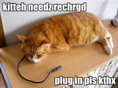 cat-recharge.jpg