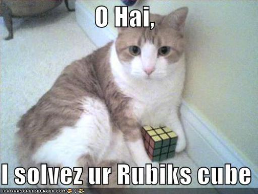 cat-rubiks.jpg