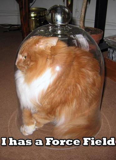 cat-forcefield.jpg