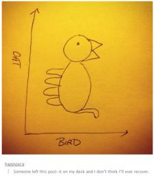 bird-cat-chart.png