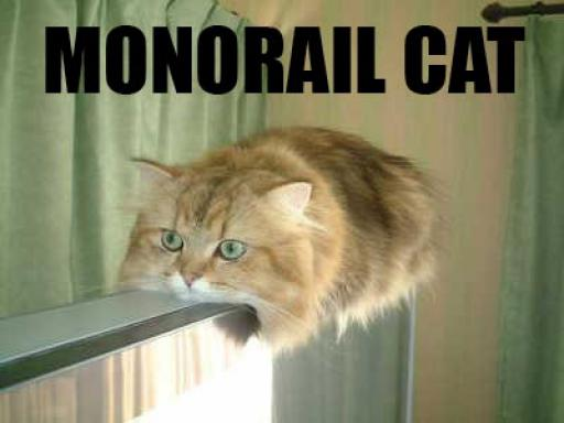 cat-monorail.jpg