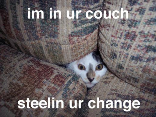 cat-couch.jpg
