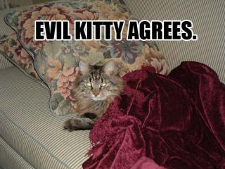 cat-evil_agree.jpg