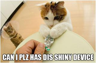 cat-shiney.jpg