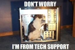 cat-techsupport.jpg