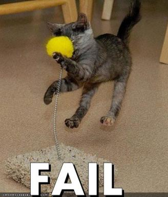 cat-fail-ball.jpg